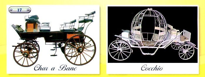 modelli speciali equieurosport carrozze. Black Bedroom Furniture Sets. Home Design Ideas